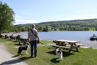 Dog friendly cottages to rent in the Lake District